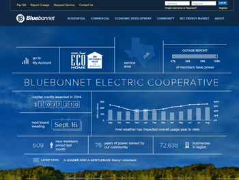 Bluebonnet Electric Coop