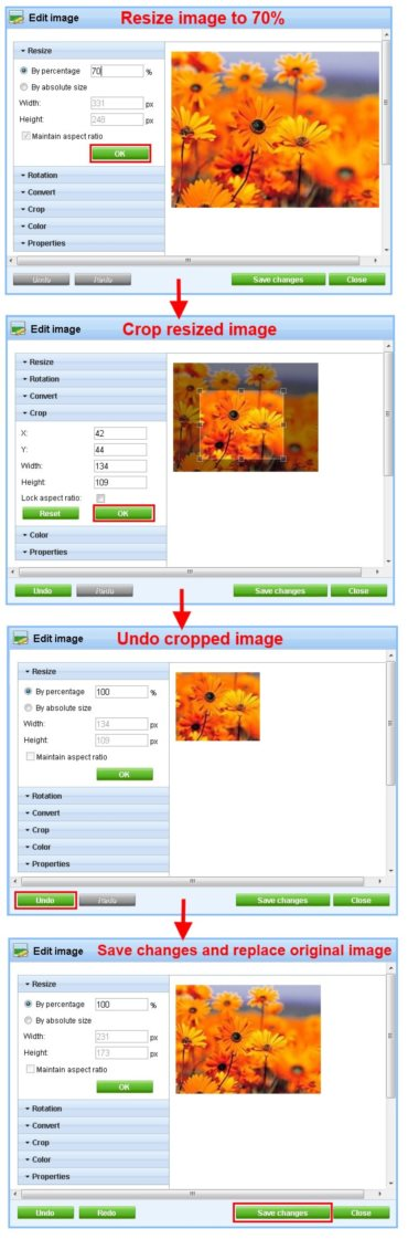 Kentico CMS image editor in version 6.0